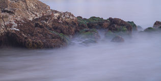 Long exposure of rocks and seaweed moss in waves. Giving a mist like effect over ocean in Laguna Beach, California at sunset Royalty Free Stock Images
