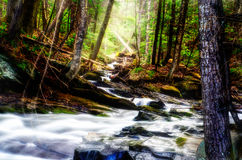 Long Exposure Stream Royalty Free Stock Photos