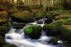 An untouched stream through Keniveil. A long exposure of a stream running through the beautifully untouched cornish woodland of Keniveil Stock Images