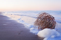 Long exposure to sea and white foam Royalty Free Stock Image