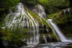 Pacific northwest waterfall in temperate rainforest lush landscape. Long exposure of washington waterfall with lush green plants and nature stock images