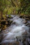 Waterfall spring creek royalty free stock photos