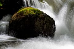 Long Exposure Water Falling In A Moss Covered Woodland Stream. The waters of Pine River in Ontario, Canada make their way over and between the moss covered rocks stock images