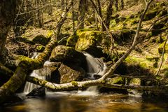 Long exposure waterfall in a green forest in Mojonavalle, Canencia, Madrid royalty free stock photography