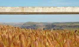 Long faisceau de béton d'envergure Image libre de droits