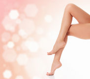 Long female legs Royalty Free Stock Photography