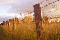 Long Fence. Photo of a fence with sunlight streaming onto it stock images