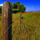 Long fence road Stock Image