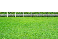 Long fence on white Stock Images