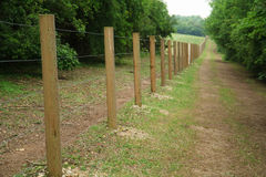 Long fence of wooden posts. And wire royalty free stock photos
