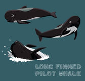 Long Finned Pilot Whale Cartoon Vector Illustration Royalty Free Stock Image