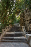 Long flight of stony steps surrounded by trees Stock Photos