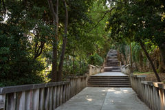 Long flight of stony steps surrounded by trees Royalty Free Stock Photography
