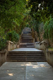 Long flight of stony steps surrounded by trees Stock Photography