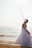 Long flying veil Stock Photo
