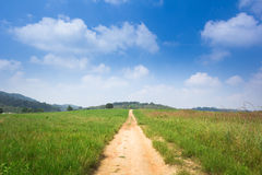 Long footpath Stock Photography