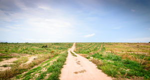 Long  footpath  to  horizon. Long  footpath leads up a hill to the distant horizon Stock Photography