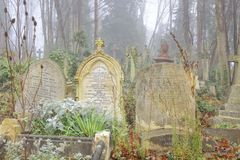 Cemetery grave stones, london. Long forgotten grave stones covered in weeds and ivy on a misty day in an old Victorian cemetery in North London, uk royalty free stock photo