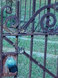 Long forgotten ornate cemetary gate. Ornate iron gate stands forgotten and rusting Stock Photos