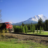 Long freight train. Royalty Free Stock Images
