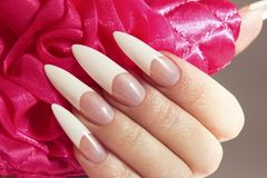 Long French manicure. On the female hand close-up.Nail art.Nail extension stock photos