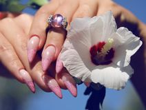 Long French nails with white manicure on a woman`s hand. With pink accessory on a nature background stock photography