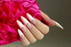 Long French nails. Long French nails with white manicure on a woman's hand with pink accessory on a dark background royalty free stock images