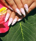 Long French nails with white manicure on a woman`s hand. With pink accessory on a nature background royalty free stock images