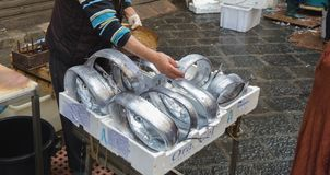 Long fresh fish for sale in the street fish market in Catania, S stock photos