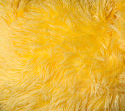 Long fur texture Stock Photo