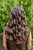 Long glossy curly hair back view. Back view of brunette woman with long dark curly hair on garden background. Long glossy curly hair. Curly hair. Hairstyle back stock image