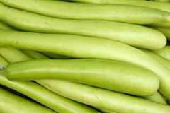 Long gourd Royalty Free Stock Photo