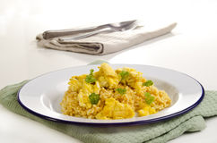 Long-grain curry rice Royalty Free Stock Images