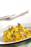 Long grain curry rice with scrambled eggs Royalty Free Stock Photo