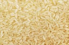 Long grain rice Stock Image