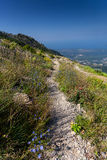 Long gravel path on high mountain at sunny day Stock Photos