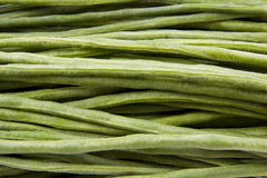 Long green beans Royalty Free Stock Images