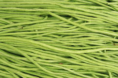 Long green beans background Royalty Free Stock Photos