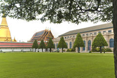 Long green lawn with trees near the architecture of the palace i Royalty Free Stock Images