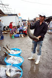The man hold big fish at fishing market. LONG HAI, Royalty Free Stock Photos