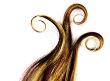 Long hair. Long colorful hair style on white isolated background Royalty Free Stock Images