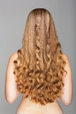 Long hair Stock Image