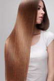 Long Hair. Beautiful Woman with Healthy Brown Hair. Royalty Free Stock Photo