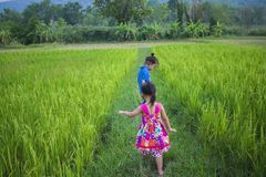 Long hair boy and little girl playing in rice field. and a girl she scared a muddy. High resolution image gallery stock photo