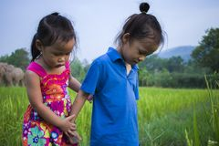 Long hair boy and little girl playing in rice field. and a girl she scared a muddy. High resolution image gallery royalty free stock photography