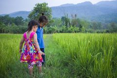 Long hair boy and little girl playing in rice field. and a girl she scared a muddy royalty free stock photography