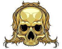 Long hair skull Royalty Free Stock Photos