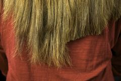 Long hair after some cutting close up. Long hair after some cutting extreme close up Stock Images