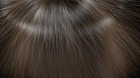 Long hair texture Stock Photos