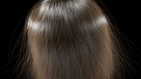 Long hair texture Royalty Free Stock Image